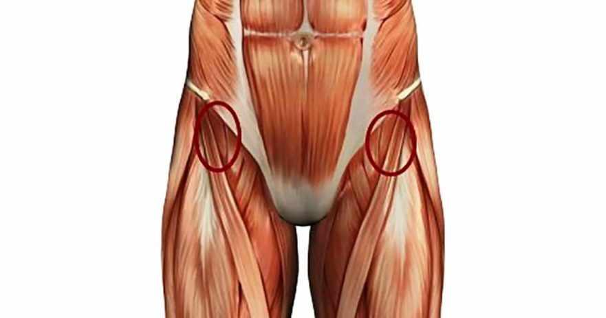 How To Strenghthen Hip Flexors